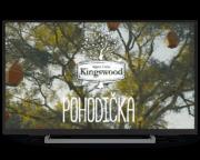 Programatická kampaň v HbbTV pro Kingswood